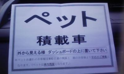 natu_7.jpg